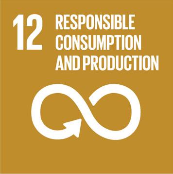Objectif 12. Consommation et production responsables