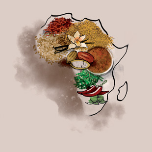 African Gastronomy